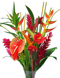 wholesale tropical bouquets miami